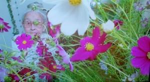 Ouma Bee flowers